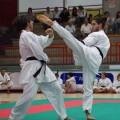 Dario-kumite